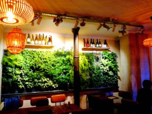 Mur végétal d'un café